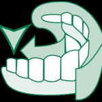 ccmo-brossage-dents-04