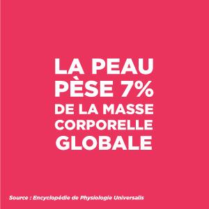 La peau pèse 7% de la masse corporelle globale